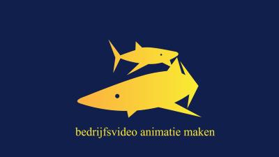 bedrijfsvideo animatie maken de 10 voordelen